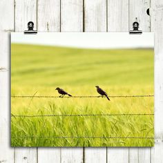 TWO IN THE BARLEY by Sun in VIRGO on Etsy