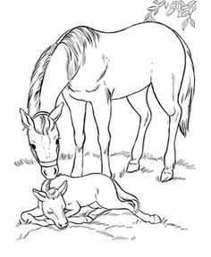 Printable Coloring Pages Of Horses . 24 Printable Coloring Pages Of Horses . Carousel Horse Coloring Pages Farm Animal Coloring Pages, Coloring Pages To Print, Coloring Book Pages, Printable Coloring Pages, Free Coloring Sheets, Coloring Pages For Kids, Printable Animals, Free Printable, Free Horses