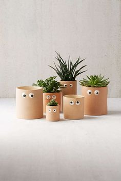 The cutest thing I've seen all day! Googly Eye Planters #suculants #planters #affiliate