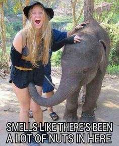 Hilarious Pictures of the week -101 pics- Smells Like There's Been A Lot O Nuts In Here