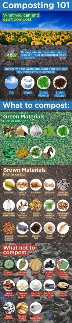 Vegetable Gardening: Composting Infographic