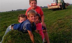 De jongens helpen Boer Huub op het land op FarmCamps de Kamperhoek Land, Couple Photos, Film, Couples, Couple Shots, Movie, Film Stock, Couple Photography, Cinema