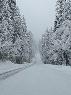Winter season - the road less traveled.