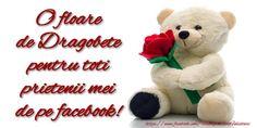 Dragobete O floare de Dragobete pentru toti prietenii mei de pe facebook! School Lessons, Teddy Bear, Valentines, Facebook, Balcony, Valentine's Day Diy, Valentines Day, Teddy Bears, Valentine's Day