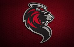 USHL Hockey Club Logo and Branding Design