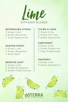 doTERRA Lime Essential Oil Diffuser Blends - Essential Oil Diffuser - Ideas of . - doTERRA Lime Essential Oil Diffuser Blends – Essential Oil Diffuser – Ideas of Essential Oil Di - Essential Oil Diffuser Blends, Doterra Essential Oils, Doterra Blends, Basil Essential Oil, Diy Diffuser Oil, Key Lime Essential Oil, Doterra Oil Diffuser, Eucalyptus Essential Oil Uses, Tangerine Essential Oil