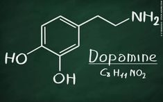 The Role of Dopamine in Motivation and Learning - Neuroscience News Brain System, Gambling Addiction, Brain Science, Time Magazine, Health And Fitness Tips, Neuroscience, How To Better Yourself, How Are You Feeling, Motivation