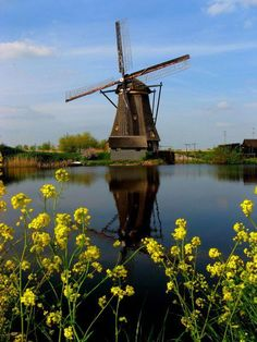 The Netherlands - my windmill-obsessed friend was so jealous of my pics :) Holland Windmills, Old Windmills, Netherlands Windmills, Tilting At Windmills, Water Tower, Le Moulin, Beautiful Landscapes, Places To See, Beautiful Places