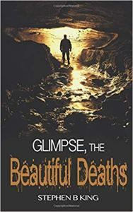 Glimpse, The Beautiful Deaths (Deadly Glimpses) by Stephen B King Psychological Thriller - Fantastic! Major Crimes, Psychological Thriller, Thriller Books, Writing Styles, S Stories, Thrillers, What Goes On, Book Reviews, Memoirs