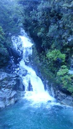 Fiordland is worth visiting....
