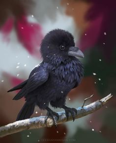 """Painted a little made-up birdI decided to name it """"Pocket Raven"""""""