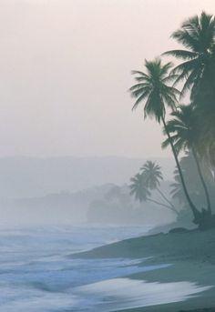 misty ocean mornings