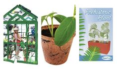 Kids' gardening kits to entertain and educate