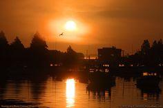 Sunrise in Corea, Maine
