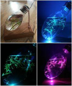 Light Bulb Aquarium Night Light - #TableDeskLamps #Aquarium, #Bluetooth, #Conceptual, #Led, #LightBulb, #Recycled, #Vintage, #Wood (source: idlights.com)