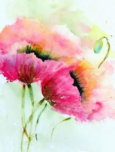 two pink poppies flower paintings Vase-with-pink-roses-flower-painting The based on are a mixture of beautiful and vibrant colours. The can use a mixture of random brush work to make these Arte Floral, Watercolor Cards, Watercolor Flowers, Easy Watercolor, Watercolor Pictures, Tattoo Watercolor, Pink Poppies, Poppy Flowers, Green Flowers