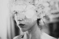 By Silvia Grav