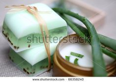 Google Image Result for http://image.shutterstock.com/display_pic_with_logo/427459/427459,1291272458,1/stock-photo-handmade-soap-bars-aloe-vera-leaves-and-moisturizer-composition-66358240.jpg