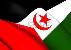 Western Sahara, Flag Vector, Company Logo