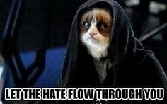Hail the master of grumpyness!