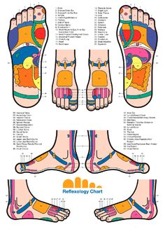 Map by Eunice Ingham: every organ in the body has its reflex point on the foot