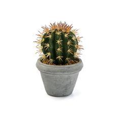 Umelý kaktus v betónovom kvetináči Versa Pot Home Nordic Blonde, Artificial Plants, Plant Decor, Planter Pots, Plastic, Cactus, Fake Plants, Artificial Indoor Plants, Botanical Decor