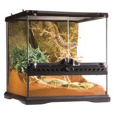 Exo Terra® Advanced Reptile Terrarium | Terrariums | PetSmart