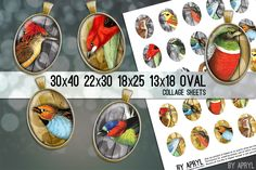 Vintage bird illustrations meet modern design in these oval digital collage sheets. This set includes 30x40mm, 22x30mm, 18x25mm, and 13x18 ovals for scrapbooking, pendants, earrings, and other projects. https://www.etsy.com/listing/152253907