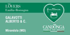 Ecco una delle frutterie d'Italia dove acquistare la #Candonga #Fragola #TopQuality. http://www.candonga.it/lovers — presso Via Cecchi, 8/P 41037 Mirandola (MO).