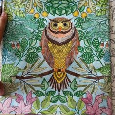 Photos New Coloring Books For Adults Are Good Your Health