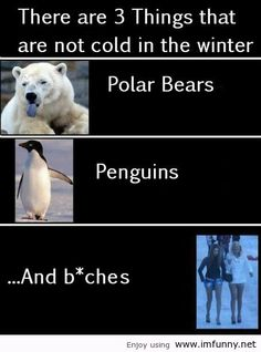 In the winter // funny pictures - funny photos - funny images - funny pics - funny quotes - Funny Winter Quotes, Funny Images, Funny Photos, Weather Quotes, Funny Jokes, Hilarious, Sarcastic Humor, Video Humour, Troll Face