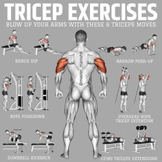 Fitness Workouts, Gym Workouts For Men, Weight Training Workouts, Chest Workouts, Best Exercise For Biceps, Gym Workout Chart, Gym Workout Videos, Gym Workout For Beginners, Workout Guide