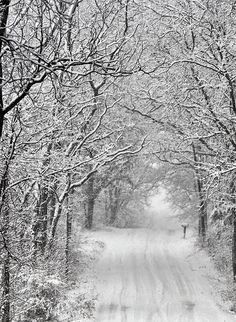 #1 Due to all of the Winter snow in Michigan, it's hard to get outside for a walk/run.