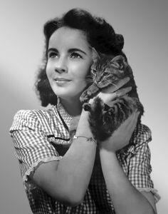Elizabeth Taylor & gatito. Convém registrar que fico deveras frustrada quando desconheço a autoria da foto.