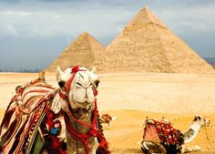Now with our help, you can easily take Luxury Tours to Egypt that will help you to explore all the major sites of Egypt, such as the Great Pyramid of Giza and the other pyramids, the Sphinx, the Karnak temple, the Luxor Temple, etc. in your own way.