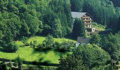 4 dagen Wolffhotel in de Eifel  4 dagen Wolffhotel in de Eifel Incl. ontbijt diners en sauna Beoordeeld met een 8.5  EUR 198.00  Meer informatie  #vakantie http://vakantienaar.eu - http://facebook.com/vakantienaar.eu - https://start.me/p/VRobeo/vakantie-pagina