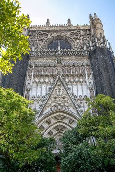City Exploring: Seville Cathedral   Out and About Global