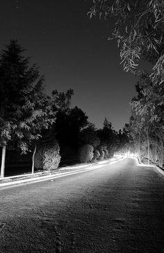 Chapultepec de noche / Chapultepec at night by eduardo.meza, via Flickr