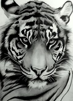 Beautiful tiger tat