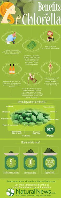 InfoGraphic - Benefits of Chlorella - http://NaturalNews.com