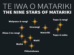 The Matariki star cluster — Science Learning Hub Auckland, Maori Words, Maori Symbols, Marine Plants, Ministry Of Education, Star Constellations, Maori Art, Star Cluster, The Nines