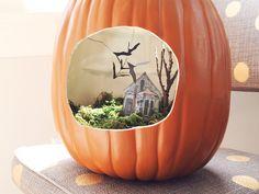 Pumpkin Terrarium #DIY for #Halloween