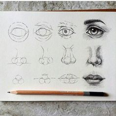 Anatomy Drawing Tutorial Eyes , nose and lips By taran Nose Drawing, Realistic Eye Drawing, Painting & Drawing, Drawing Faces, Drawing Hair, Profile Drawing, Makeup Drawing, Side Face Drawing, Easy Eye Drawing