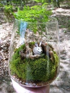 "This is a one of a kind fern and moss vase terrarium which measures 7-1/2"" high by approximately 6-1/4"" wide. The main attraction in this"