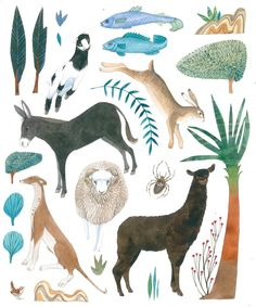 Endpaper for 'Manger', WB Eerdmans. Illustration by Helen Cann.