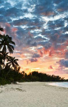 Tropical Sunset night night