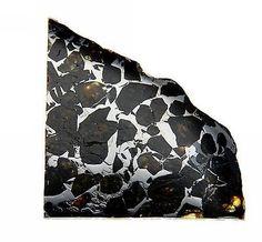 Seymchan Pallasite Cut and Polished Meteorite 15.1 gram Specimen - found in 1967