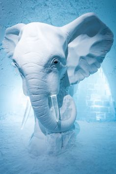 Amazing, amazing 'Elephant in the Room' sculpture in Sweden's Ice Hotel. Designed by AnnaSofia Mååg in Art Elephant Sculpture, Art Sculpture, Ice Hotel Sweden, Ice Art, Snow Sculptures, Lappland, Snow Art, Snow And Ice, Land Art
