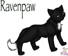 Ravenpaw is sweet and nice i love him he is soo cute :)