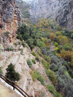 MPOWER/// Pilgrims' path to Mar Elisha monastery, Lebanon (by Beirut Lebanon, Evergreen Trees, Deciduous Trees, North Africa, Heaven On Earth, Great View, Syria, Asia Travel, Where To Go